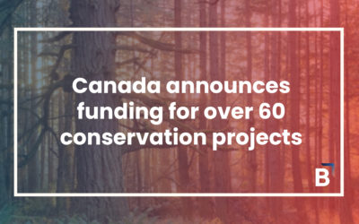 Canada Announces funding for over 60 conservation projects